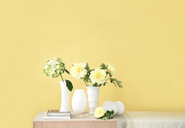 Holmegaard Vasen & Dekoration