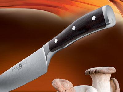 Koch- / Küchenmesser