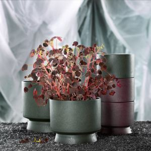 Rosendahl - recycelter Übertopf 12 cm, bordeaux
